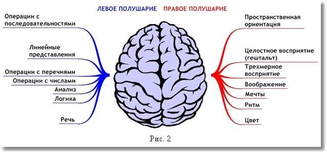 Функциональная ассиметрия мозга у лиц с аномальным сексуальным поведением