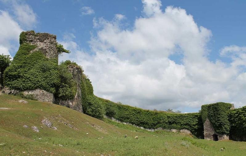 Рухская крепость. была построена Леваном Дадиани в 1647 году. фото с сайта: http://ge.blackseasilkroad.com/en/wiki/Rukhi/377/614