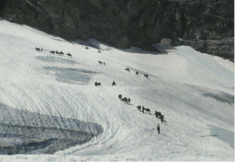 Лошади и вьючные животные на перевале в Сванетии. 1930. Источник: https://photochronograph.ru/2014/10/16/svanetiya-v-1929-godu/