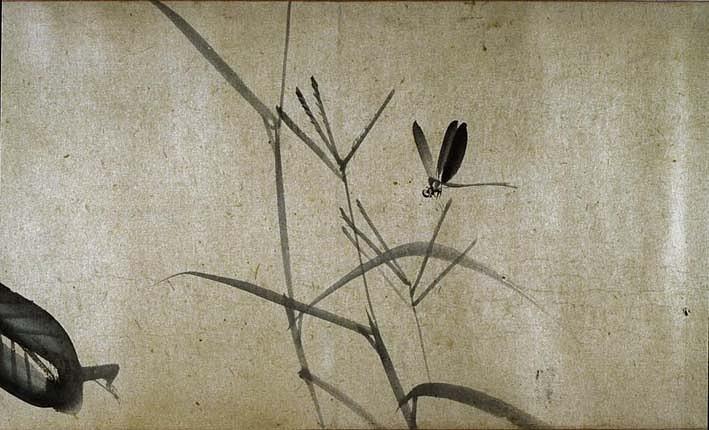 художник Матцумура Кэйбун. стиль суми-э.