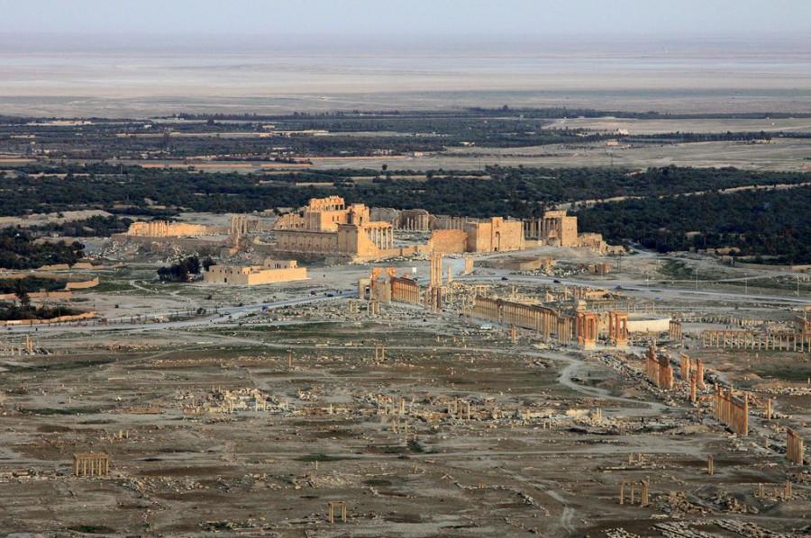 14 Южная Пальмира