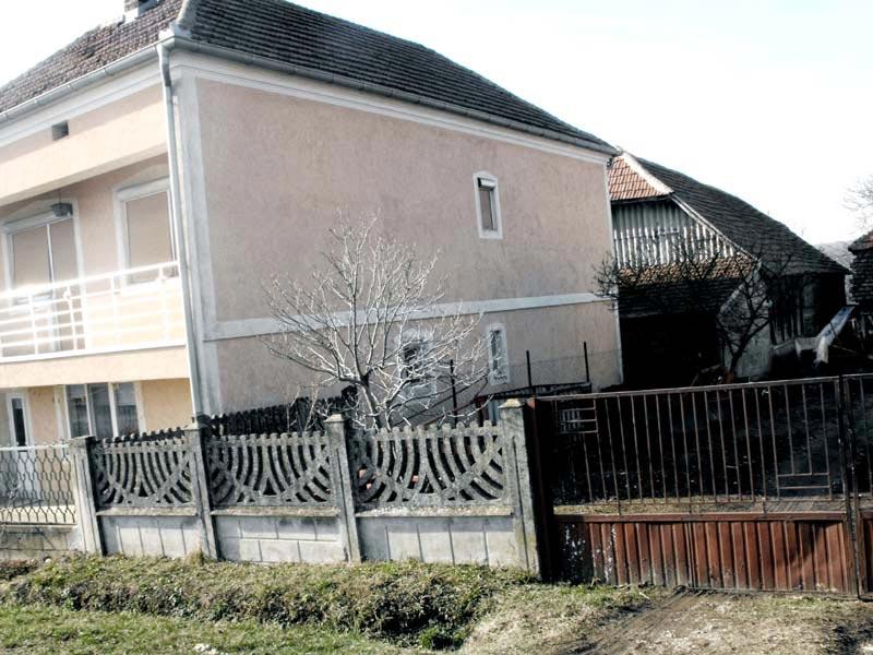 Проект пристройки дома - Виданович (Деревня Деспотовац - Сербия) (9)