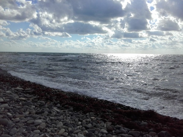 море2[1]