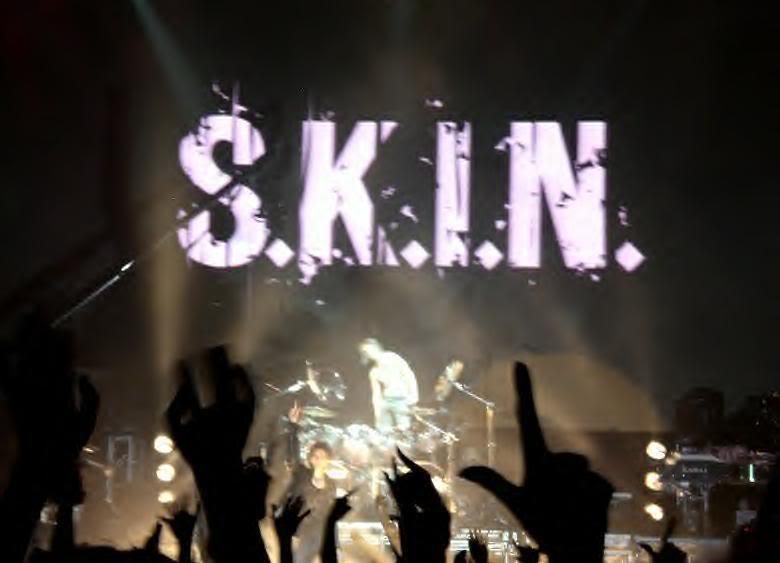 SKIN4.jpg