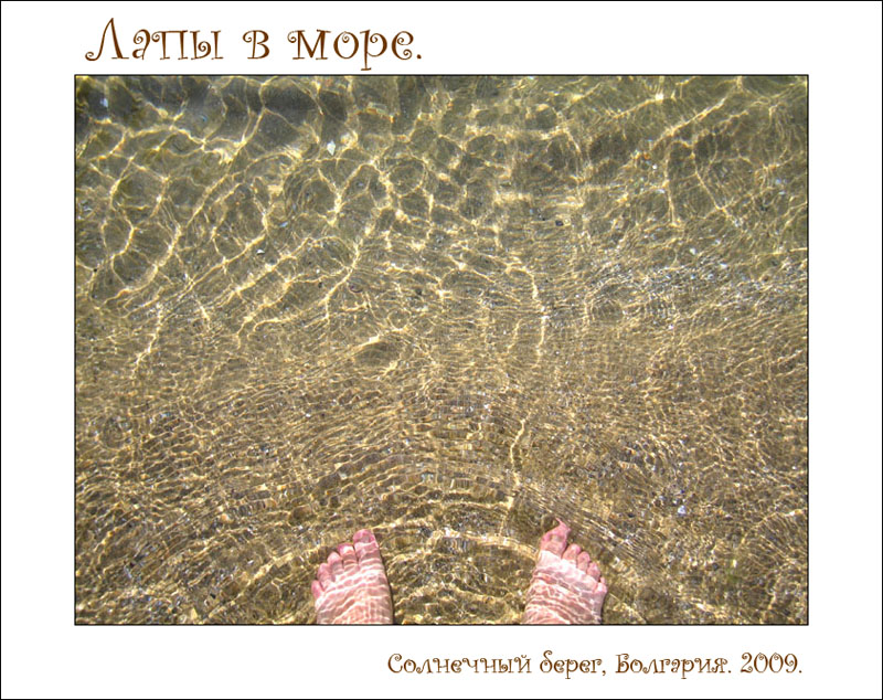 http://pics.livejournal.com/mzk/pic/00b8q2bs