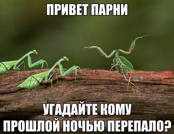 _6zyEhHBR54