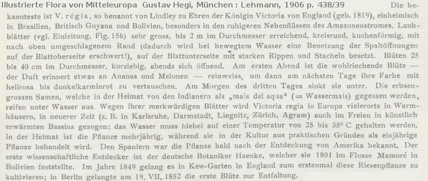 München : Lehmann, 1906 .jpg