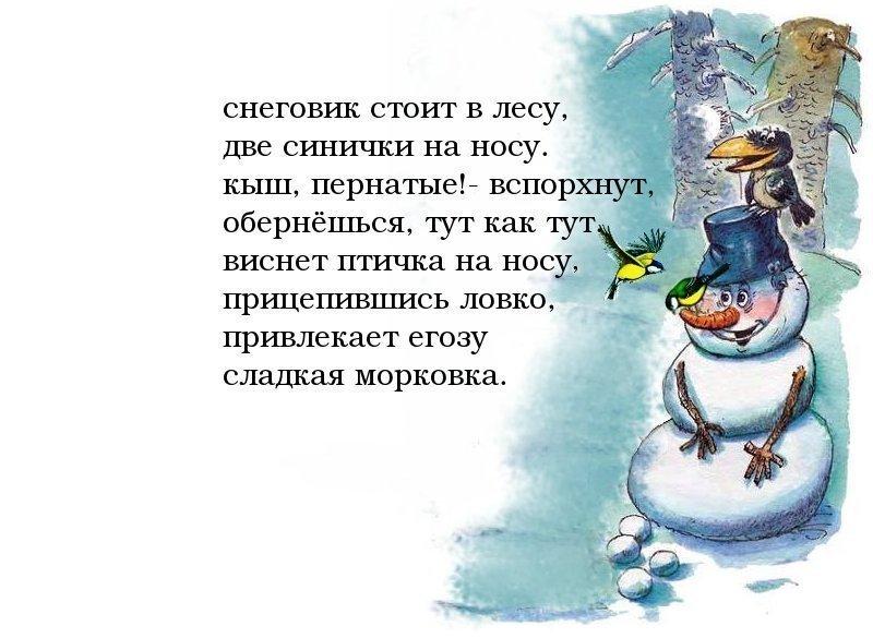 сборники стихи и сценки про снеговика детям опыт пересадки