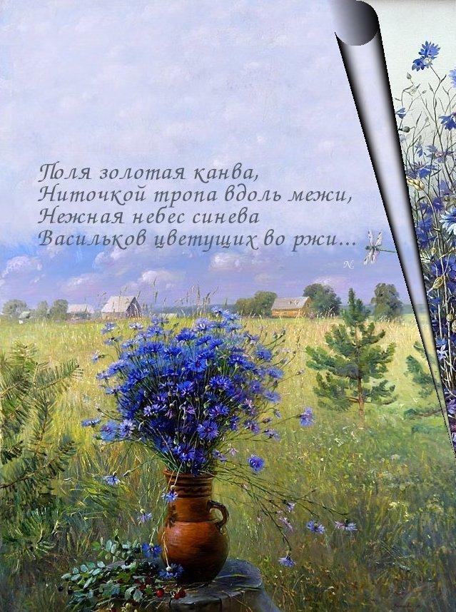 Стихи о васильках. Васильки. Художник Марина Захарова