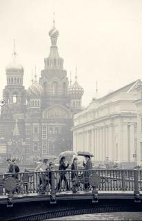 В Петербурге сегодня дожди. Дождь. Петербург. Зонты.