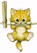 Котёнок  Кошки-мышки Стихи