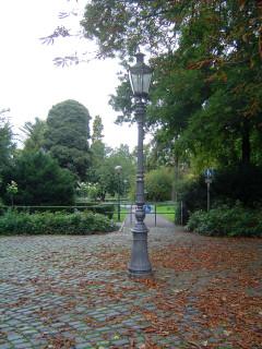 парк осень