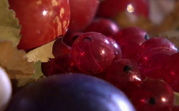 Lauscha Glas Früchte