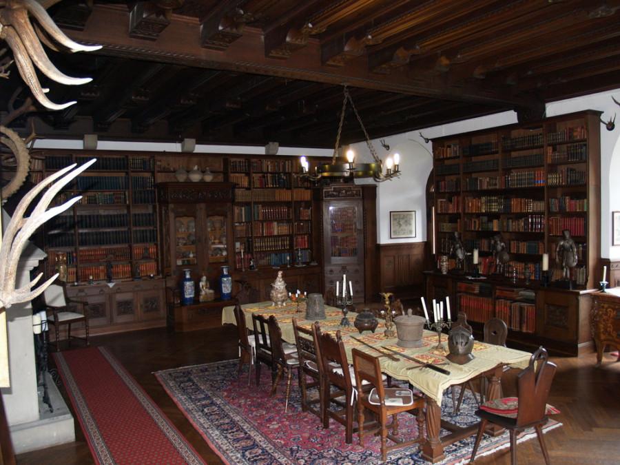 rittersaal-mit-bibliothek-schloss-reichenstein-von Stefan Gerhard Wilhelm Schwabe 2008