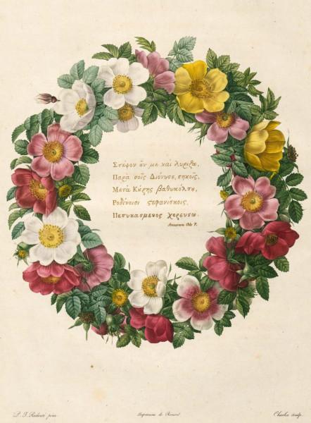 Ein Rosenkranz  von Pierre Joseph Redouté