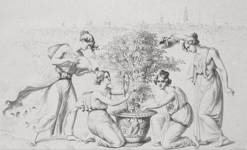 Pflege eines weißen Rosenstockes durch allegorische Gestalten