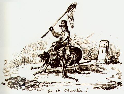 Darwin-cartoon
