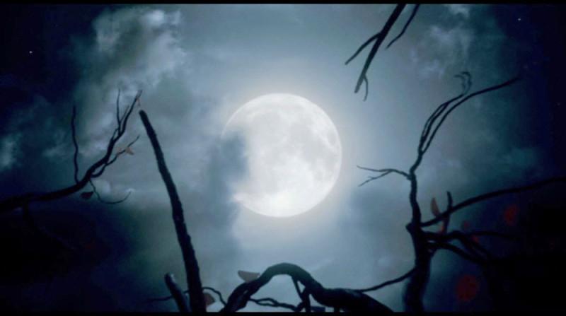 полная луна - пора превращения