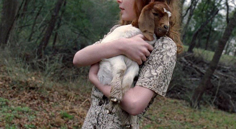 Девочка с ягненком на руках