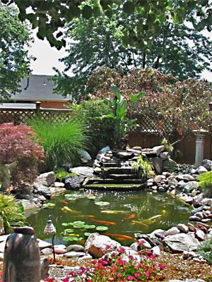 House #2 Pond