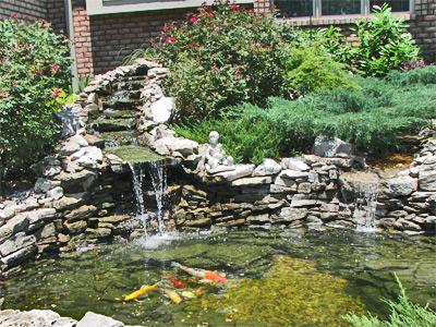 House #4 Pond close-up