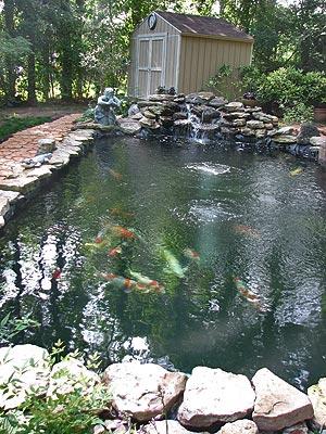 House 13 Pond
