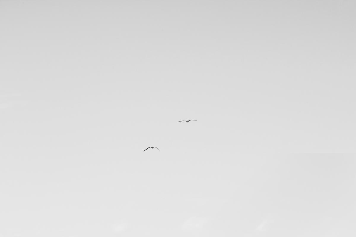 graninphoto_ 27