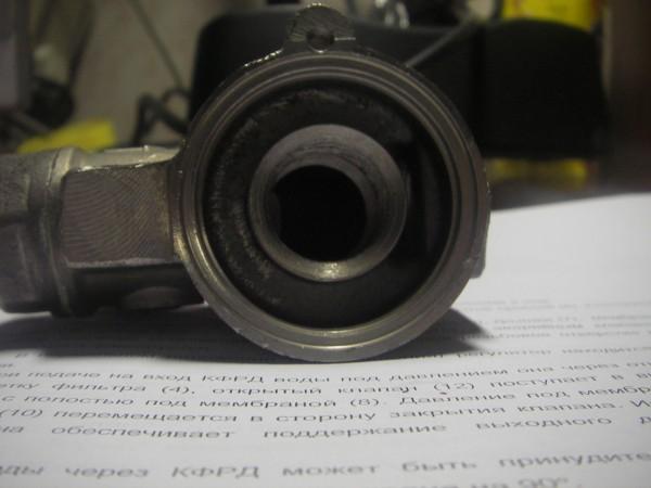 IMGP5505