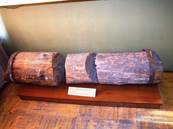 трубы дубового водопровода. саратовский музей кравеведения