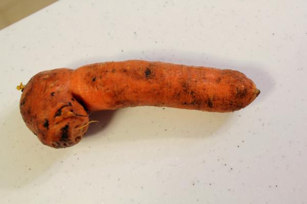 моркох