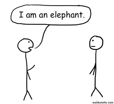 2013-11-11-Elephant