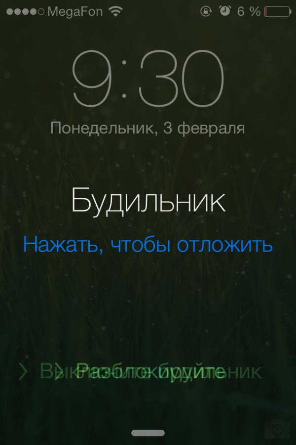 IMG_2880