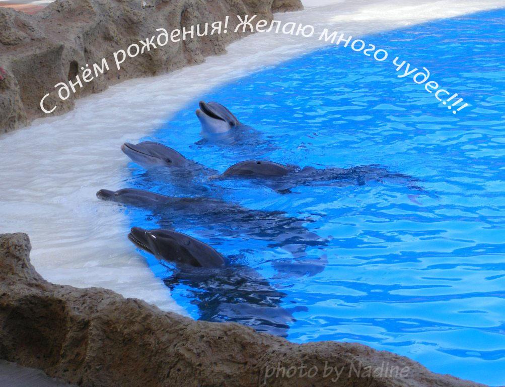 Поздравление день рожденья вода 899