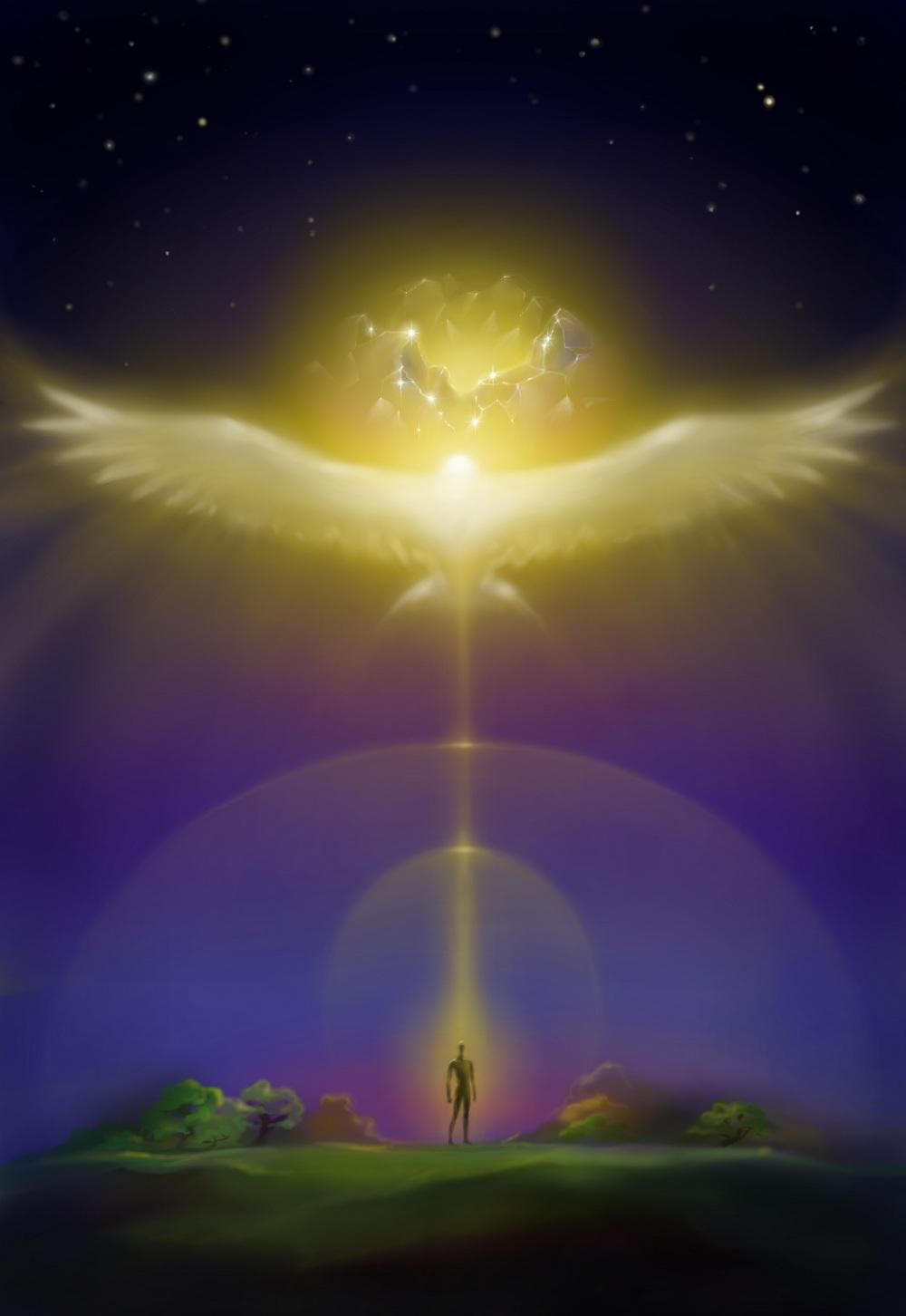 если картинка мудрость ангелов посвящен необходимости сохранения