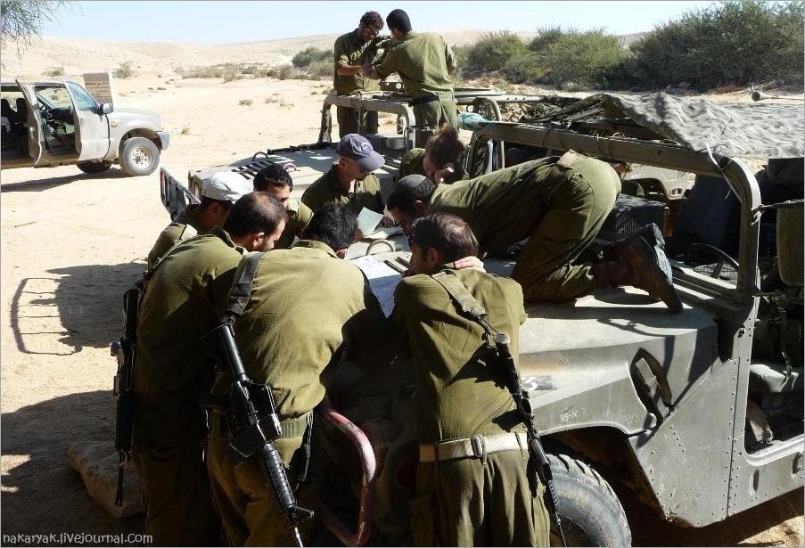 CEELIM IDF (3)_wm