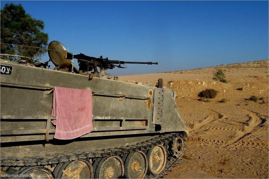 CEELIM IDF (6)_wm
