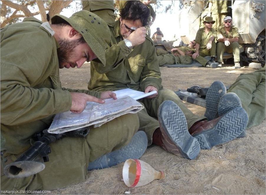 CEELIM IDF (8)_wm