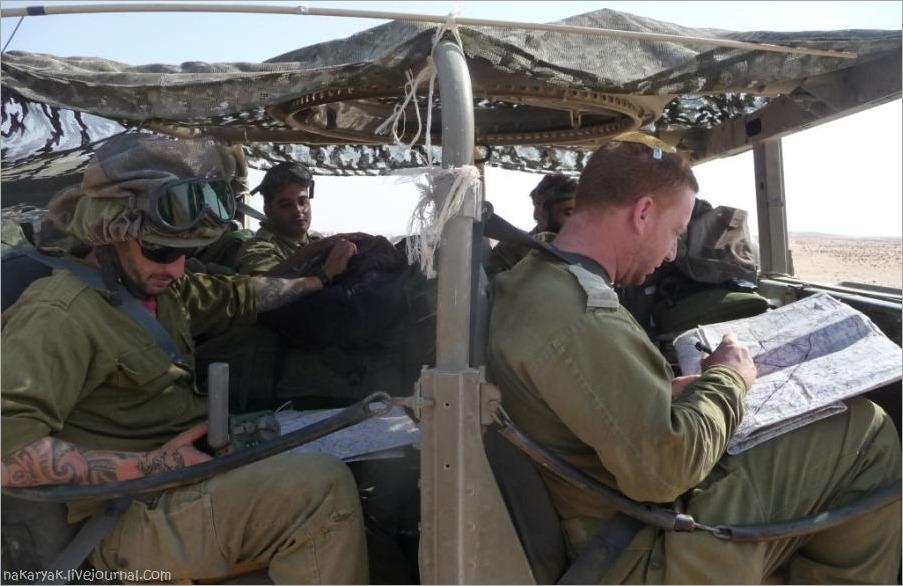 CEELIM IDF (11)_wm