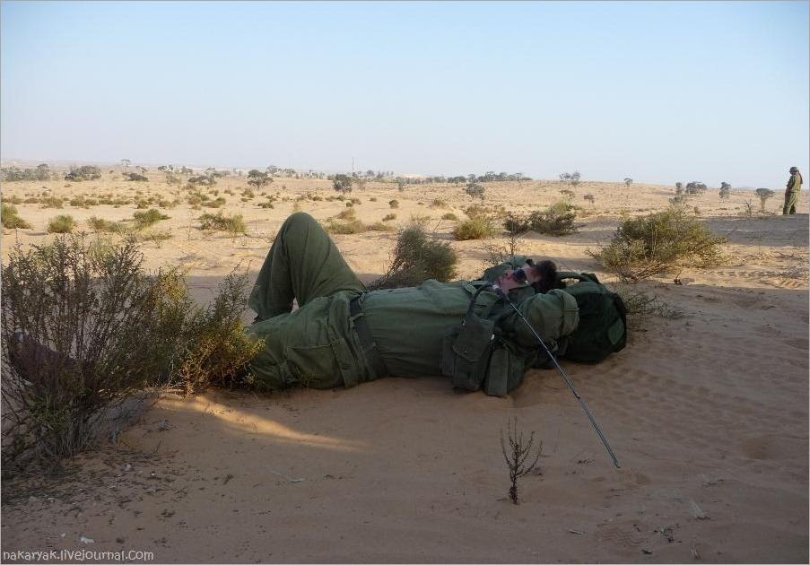 slepping IDF 1 (2)_wm