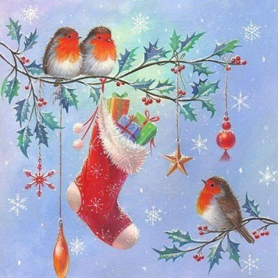 Robins with stocking