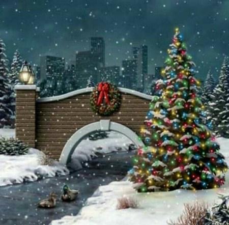 Bridge & Tree