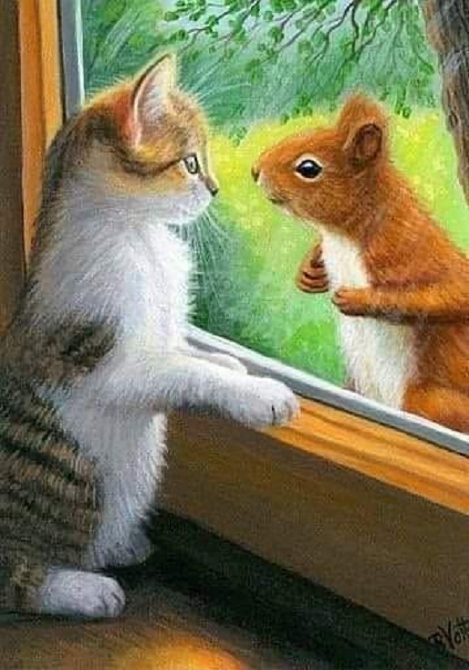 Kitty & Squirell