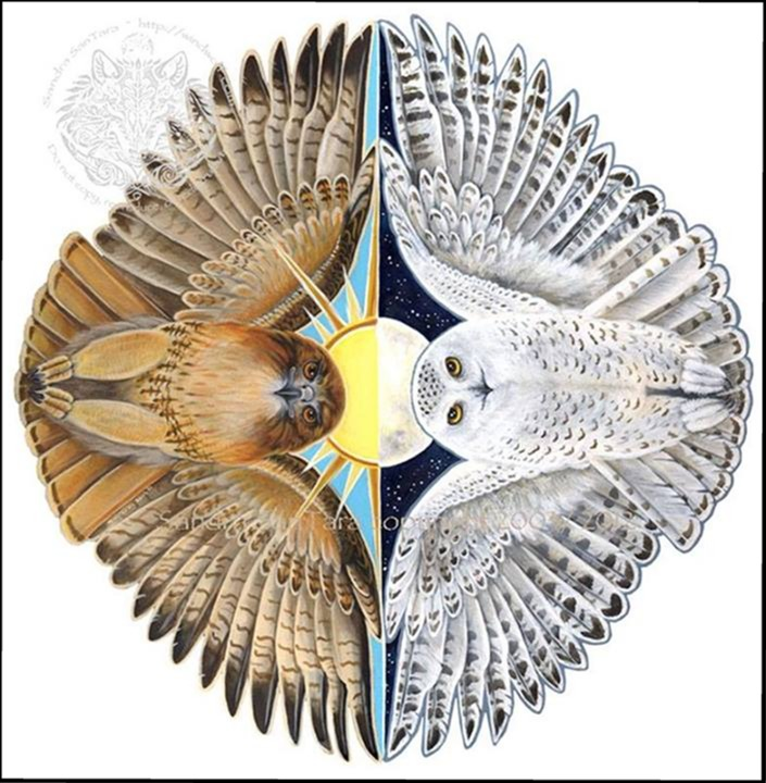 Owls edged