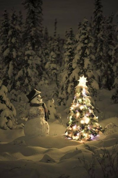 Snowman & Tree (399 x 600)