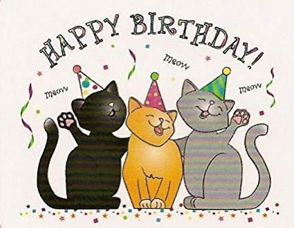 Happy Birthday Cats 4