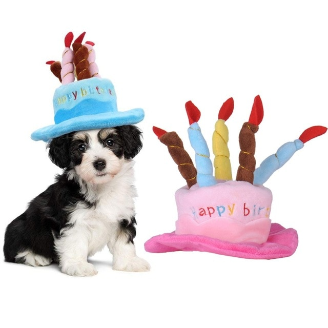 Pet-Cap-Cute-Dog-Birthday-Hat-with-Cake-Candle-Hats-Outdoor-Caps-Christmas-Gift-for-Cat.jpg_640x640