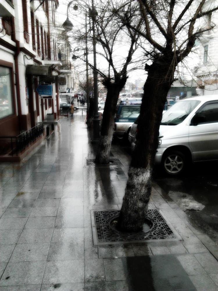 Дощщщь