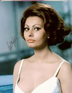 sophia loren do you think this is a good cut for meeasy to style i am a little worried about going so short my hair is like a security blanket - Sophia Loren Hair Color