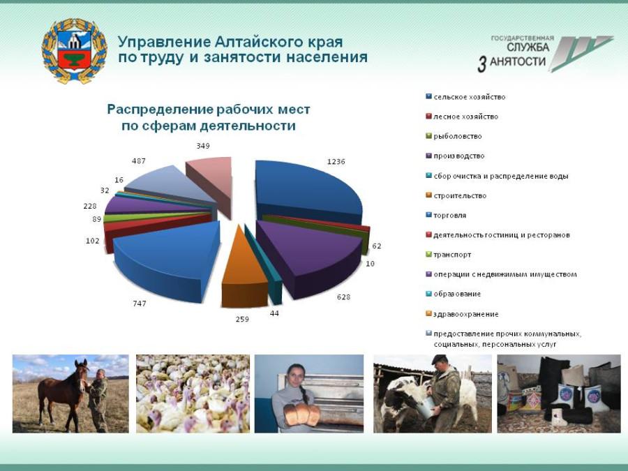 Создание рабочих мест - ЦЗН - АК - 9 мес. 2012
