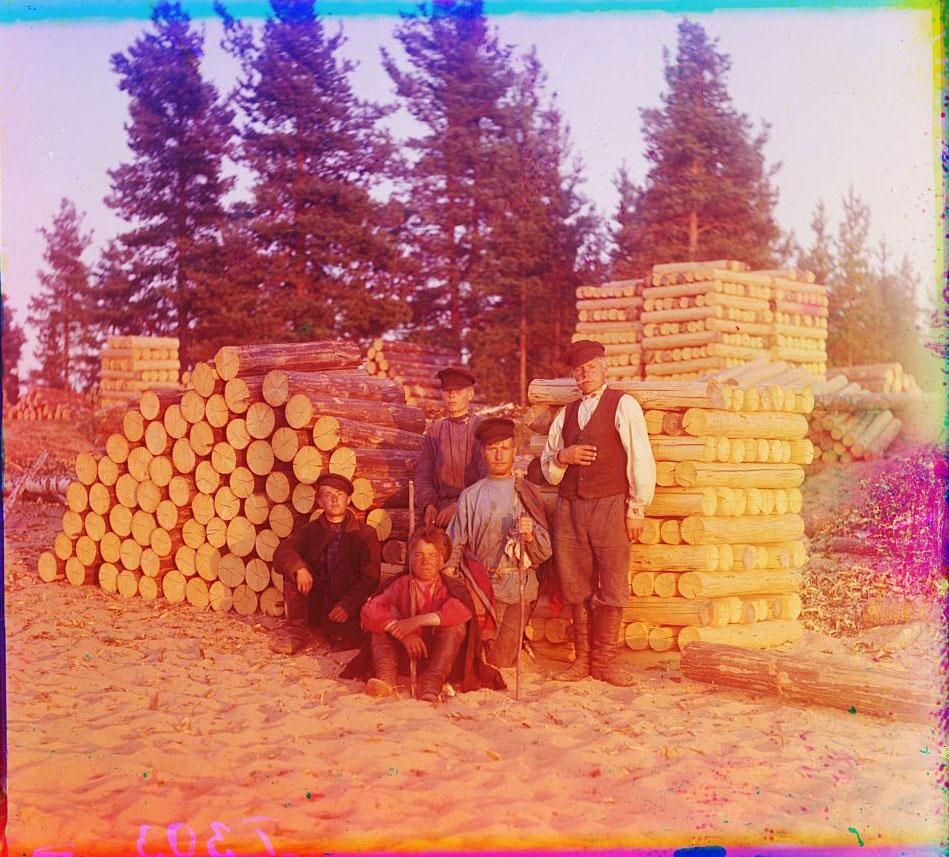 Пильщики на Вытегре, 1909 год